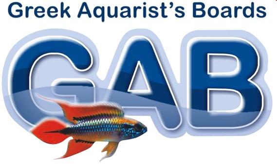 Greek Aquarist's Boards - Φόρουμ συζητήσεων γιά το χόμπυ του Ενυδρείου