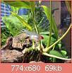 Πατήστε στην εικόνα για να τη δείτε σε μεγένθυνση  Όνομα:  P80506-195226(1).jpg Εμφανίσεις:  81 Μέγεθος:  68,6 KB